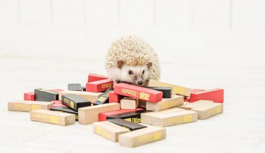 掃除をする  例文(3)  Guarda tus juguetes en la caja.