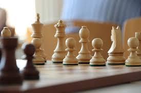 ゲームを楽しむ  例文(2)  Es dificil jugar al ajedrez.
