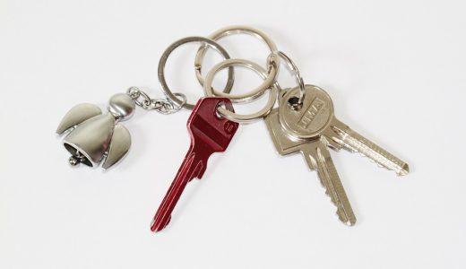 物を失くした時の表現  例文(3)  ?Perdiste la llave?