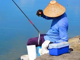 釣りをする  例文(2)  Hay muchos peces por aqui.