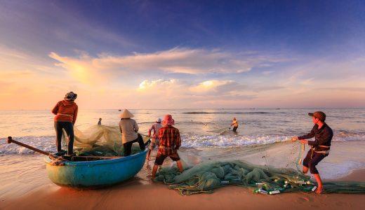 釣りをする  例文(3)  Los pescadpres pescan con la red.