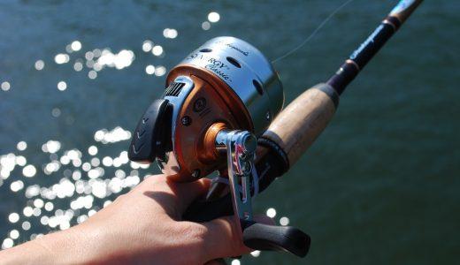 釣りをする  例文(1)  Mi hermano se fue a pescar.