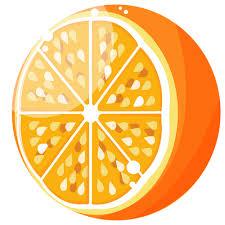 恋人・夫婦の表現  例文(2)  El es mi media naranja.