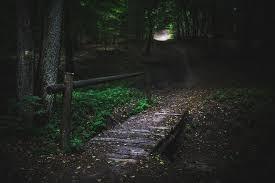 暗い明るいの表現  例文(1)  Me da miedo la oscuridad.