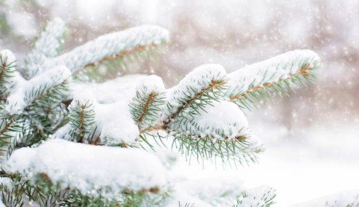 雪に関する表現  例文(2) La nieve se acumulan.